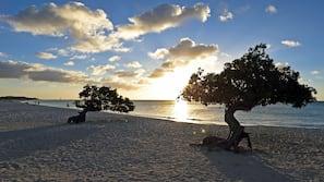 Ubicación cercana a la playa, arena blanca, cabañas de playa y tumbonas