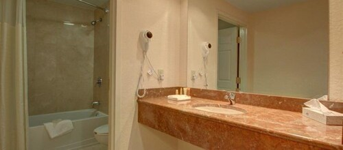 Bathroom, Floridan Palace Hotel