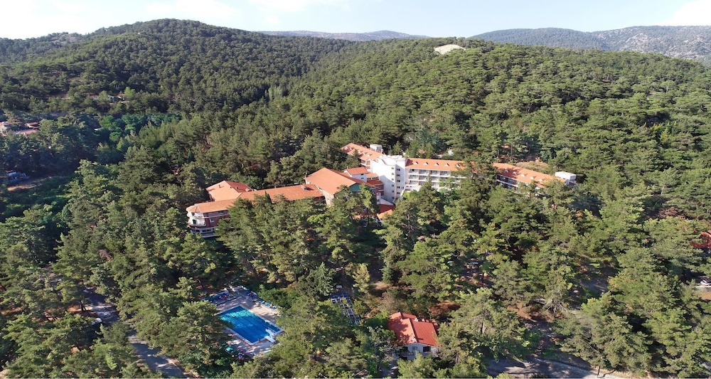 Aerial View, Forest Park Hotel