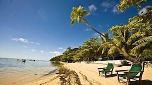 On the beach, scuba diving, snorkeling, kayaking