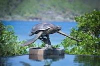 JA Enchanted Island Resort (26 of 31)