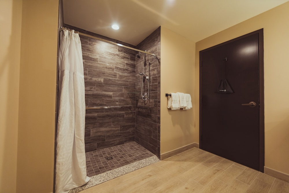 Bathroom Shower, Tailwater Lodge Altmar, Tapestry Collection by Hilton