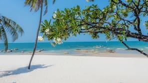 海灘、白沙、躺椅