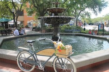 1207 South Howard Avenue, Tampa, Florida, 33606, USA.