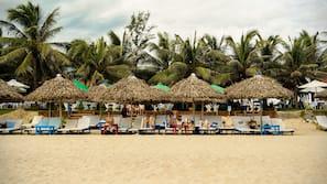 在海灘附近、免費海灘接駁車、躺椅、太陽傘