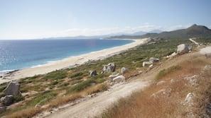 On the beach, free beach cabanas, beach shuttle, sun loungers