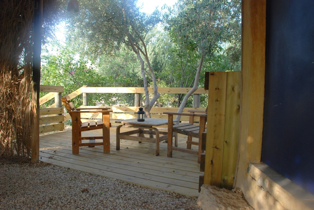 Terrace/Patio, Carmey Avdat Farm