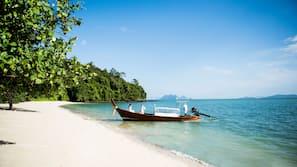 ใกล้ชายหาด, รถรับส่งชายหาด (ฟรี)
