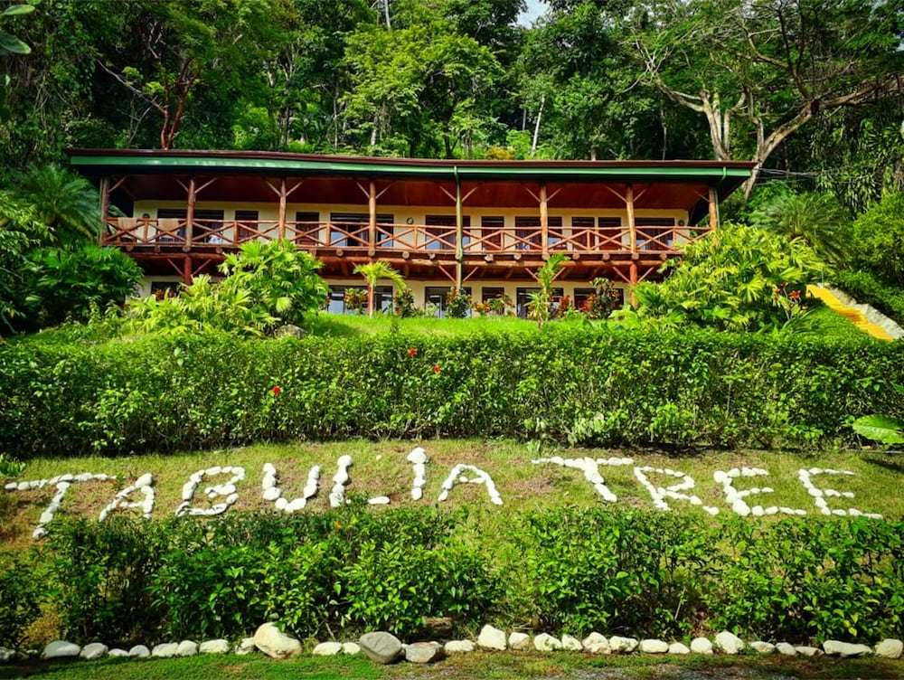 Exterior detail, Tabulia Tree Hotel and Villas