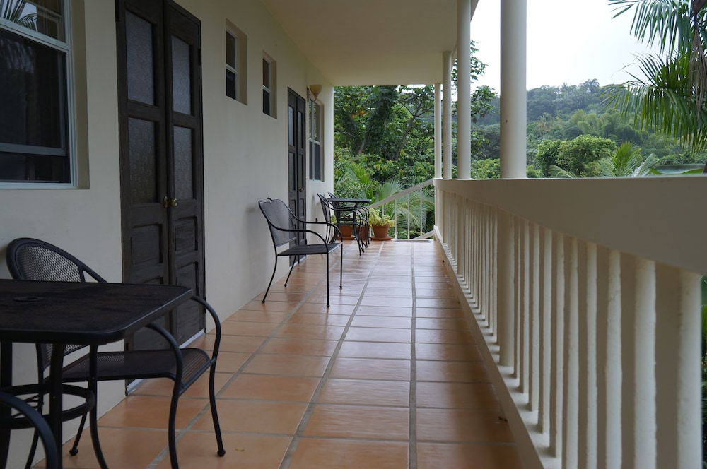 Terrace/Patio, Hacienda Moyano