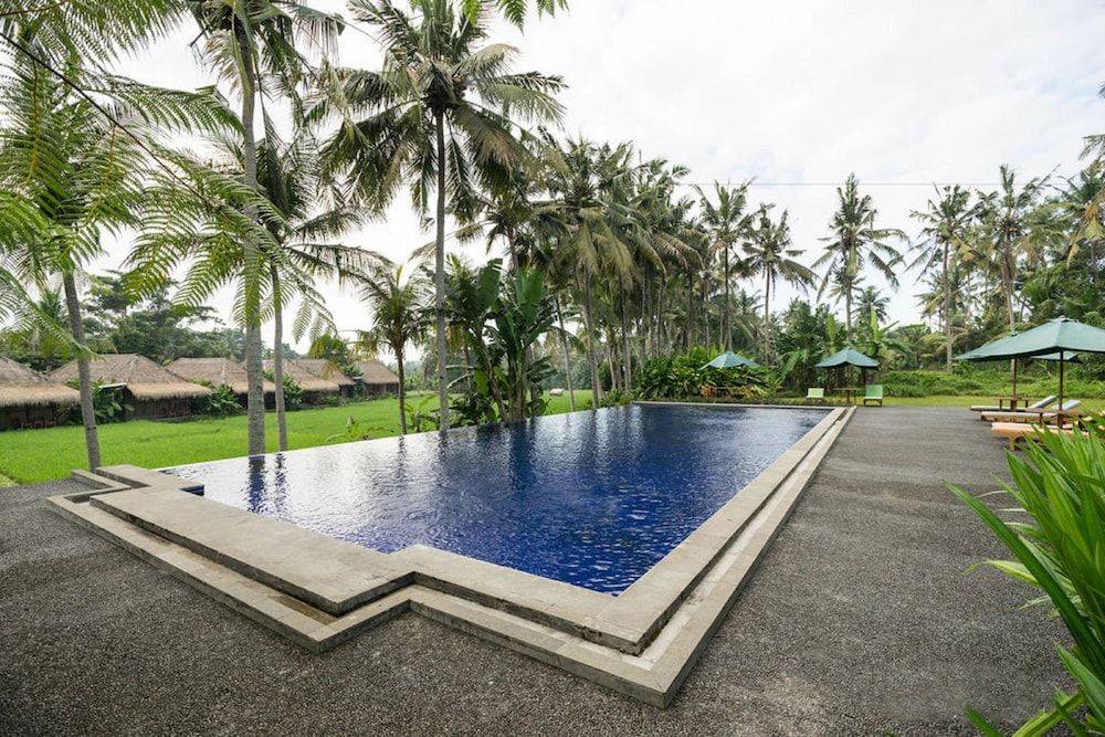 Sapulidi Resort Spa Gallery Bali Ubud Hotelbewertungen 2019