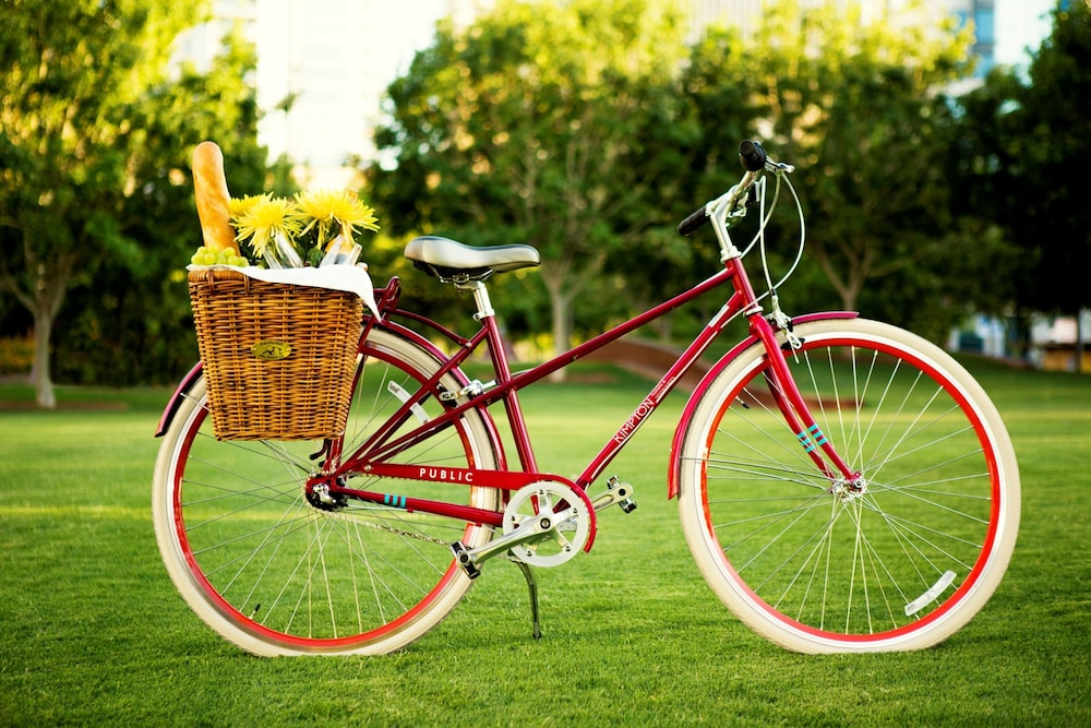 Bicycling, The Hotel Zamora