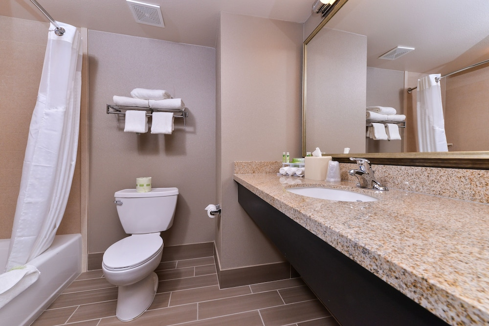Bathroom, Holiday Inn Express Hotel & Suites Indio