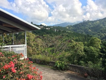 Neita's Nest - Jamaican Bed & Breakfast
