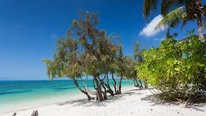 หาดส่วนตัว, เก้าอี้อาบแดด, ผ้าเช็ดตัวชายหาด, เรือคายัค