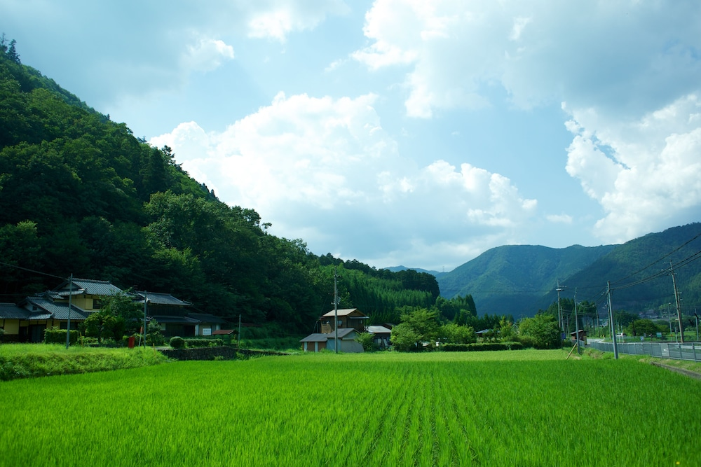 View from Property, Miyama Futon & Breakfast Thatched Cottages