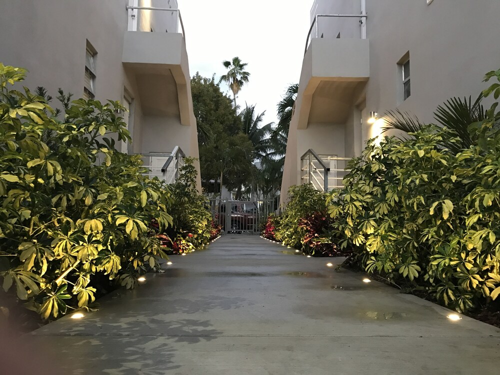 Luxury Miami Beach Apartments By Michigan
