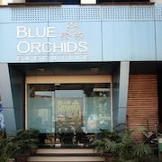 Blue Orchids Executive