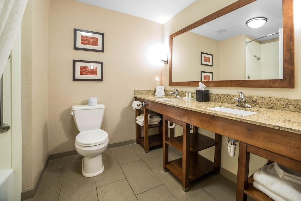 Bathroom, Comfort Suites Moab near Arches National Park