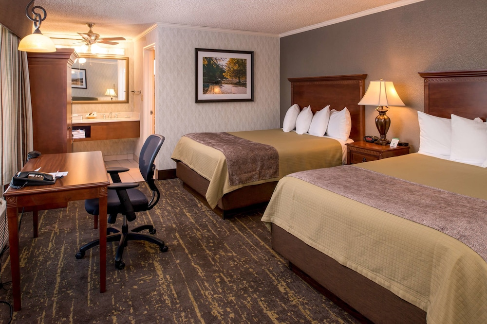 Room, Best Western Plus Black Oak