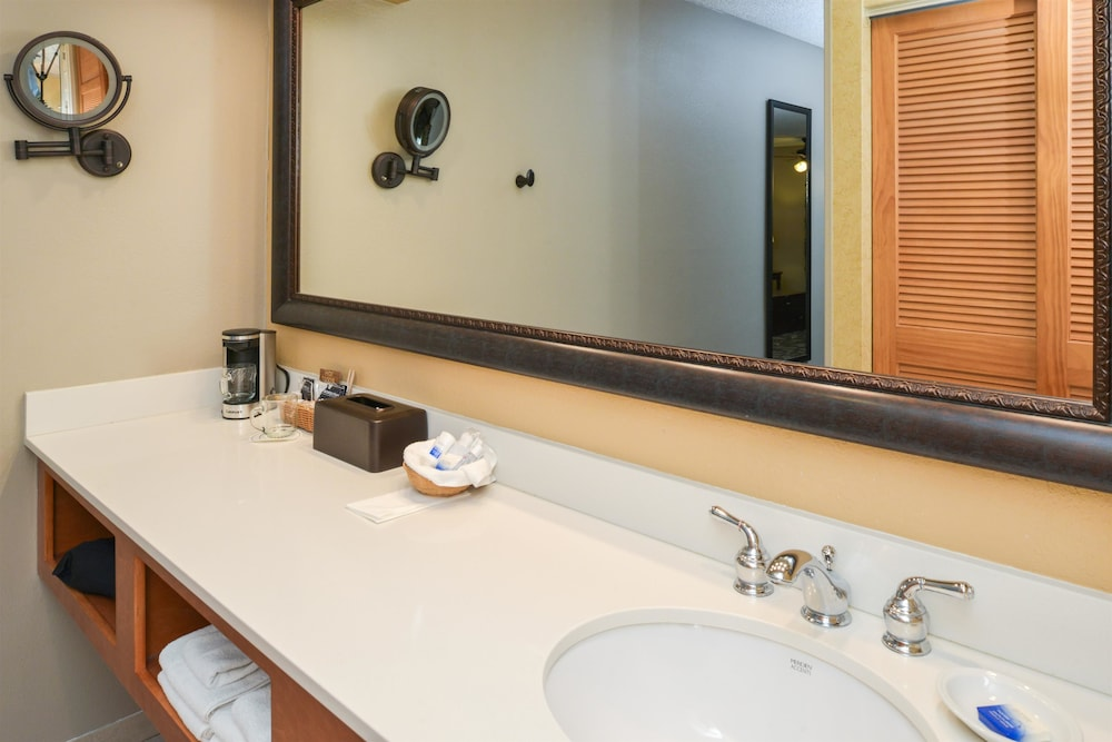 Bathroom Sink, Best Western Plus Black Oak