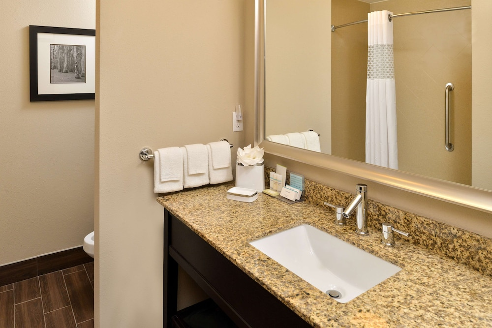 Bathroom, Hampton Inn & Suites Harvey/New Orleans West Bank