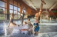 Chessington Safari Hotel (11 of 43)