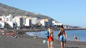 Beach nearby, black sand