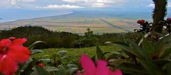 Gunung Jerai Kedah Expedia Co Id