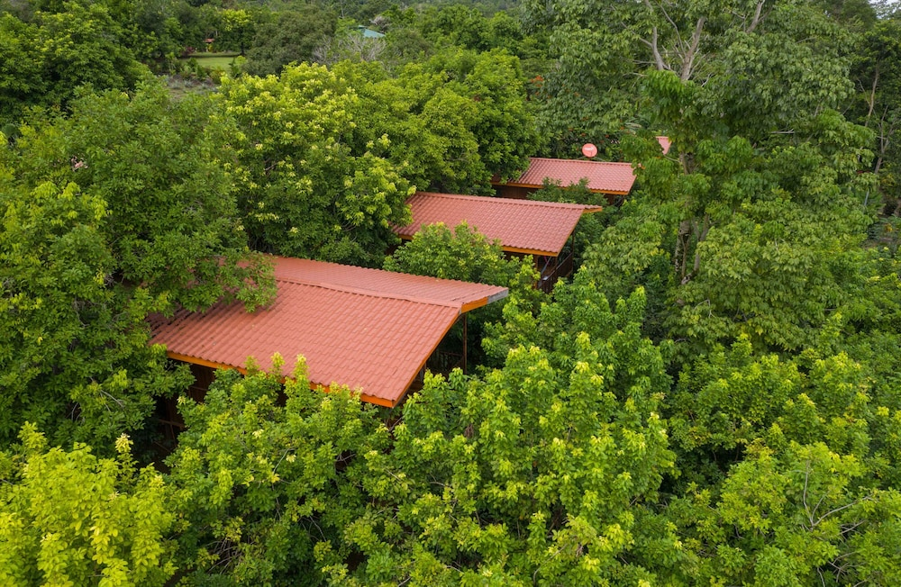 Aerial View, Heliconias Nature Lodge