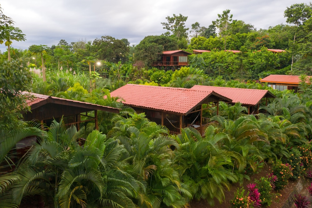 Garden, Heliconias Nature Lodge