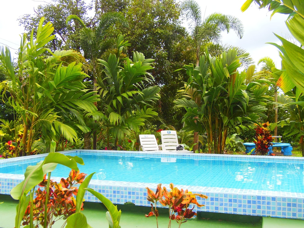 Outdoor Pool, Heliconias Nature Lodge