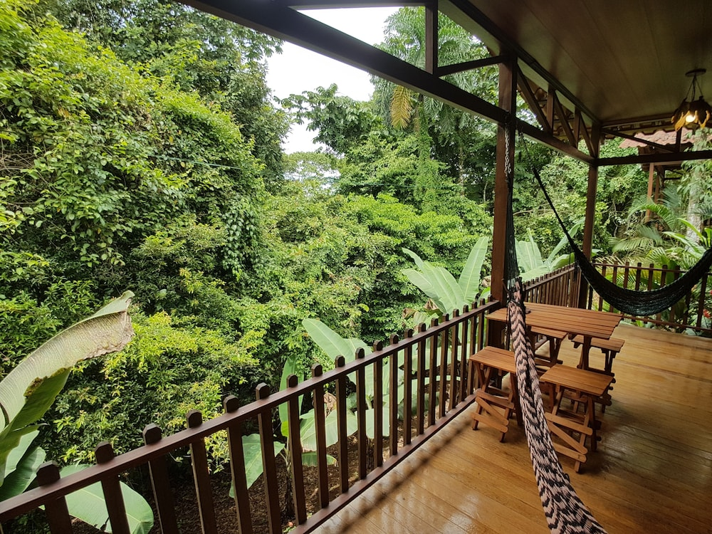 View from Room, Heliconias Nature Lodge
