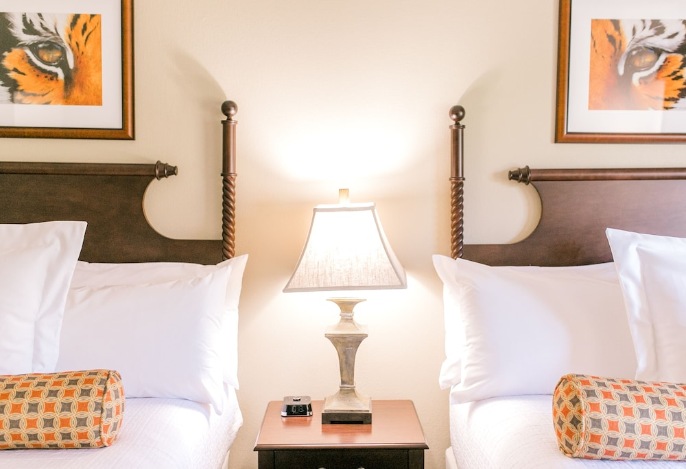 Room, Clemson University's James F. Martin Inn