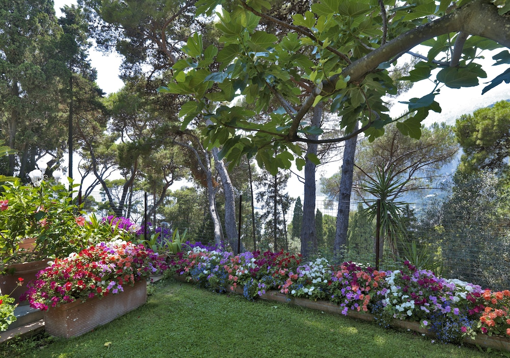 Hotel Villa Brunella In Capri Cheap Hotel Deals Rates