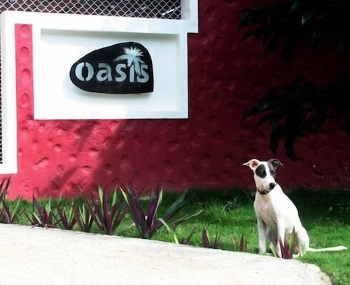 Pet-Friendly, Oasis Hotel Las Terrenas
