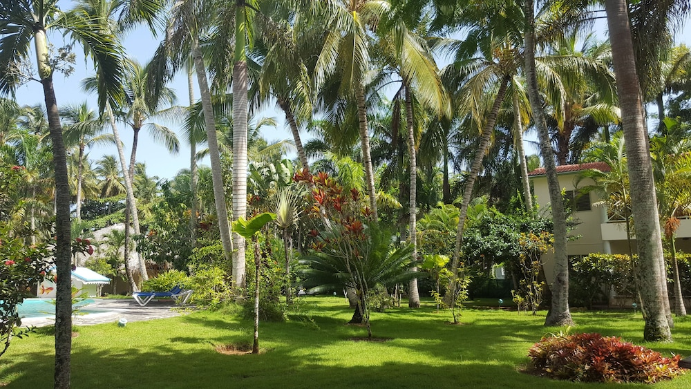 View from Property, Oasis Hotel Las Terrenas