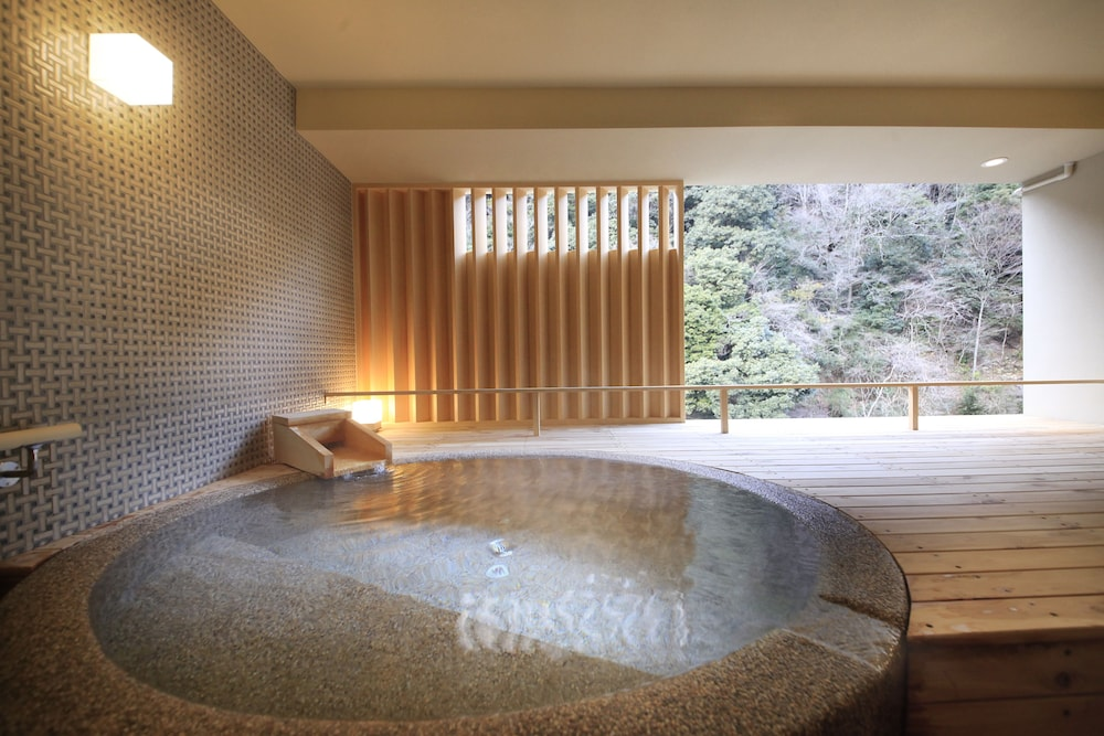 Hot Springs, Hakone Pax Yoshino