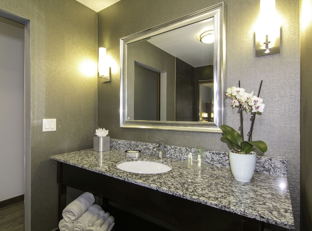 Bathroom, Holiday Inn Carlsbad