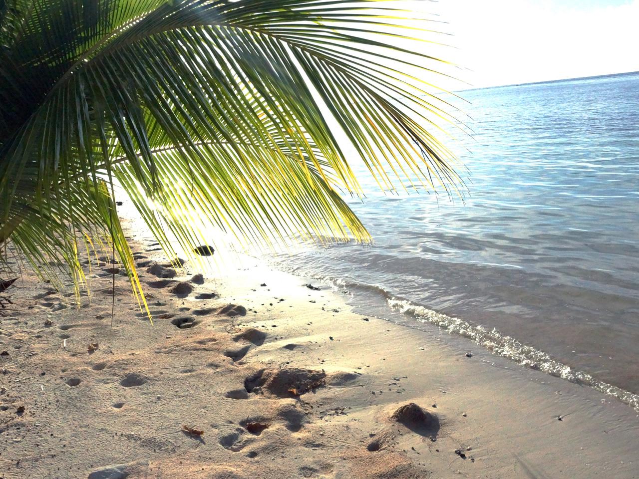 The Spirit of Samoa