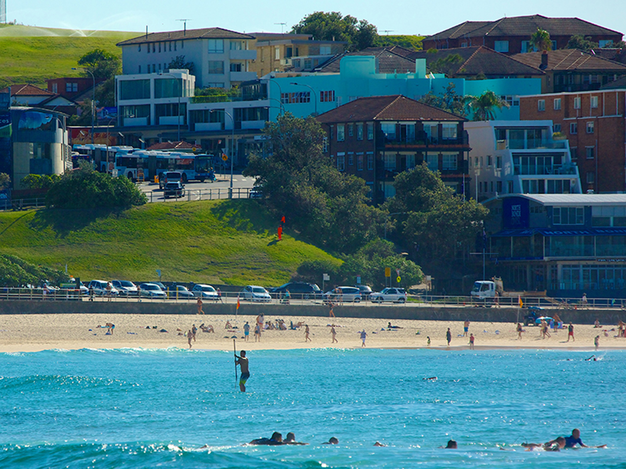 Surf's Up: A Guide to Surfing in Sydney