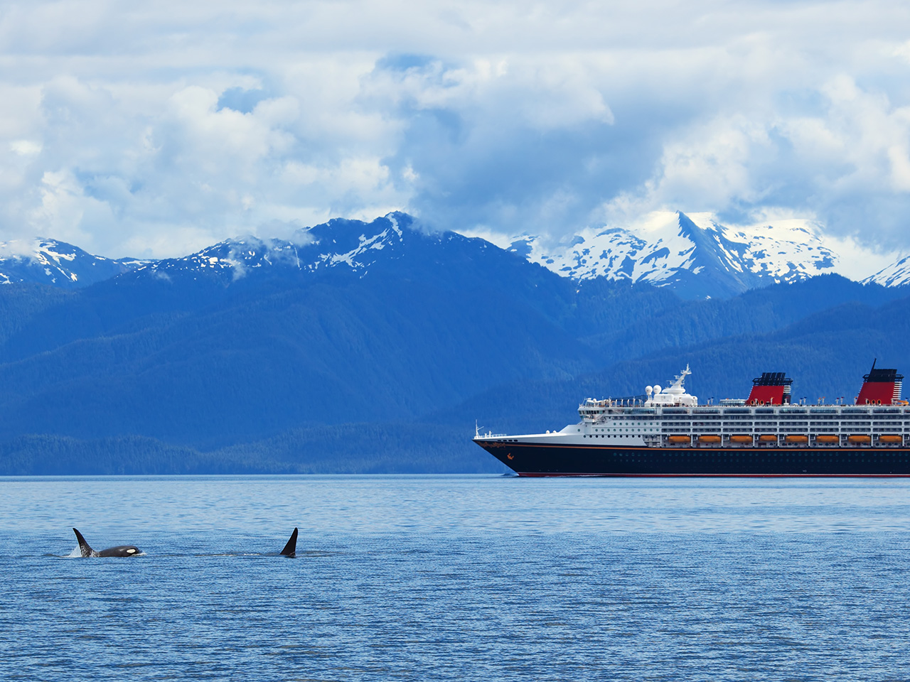 Wild Luxury: Cruising in Alaska
