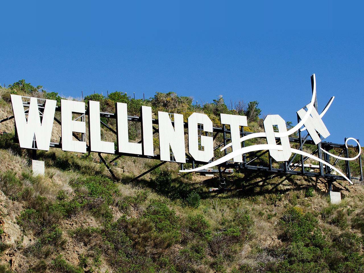 A Weekend in Wellington