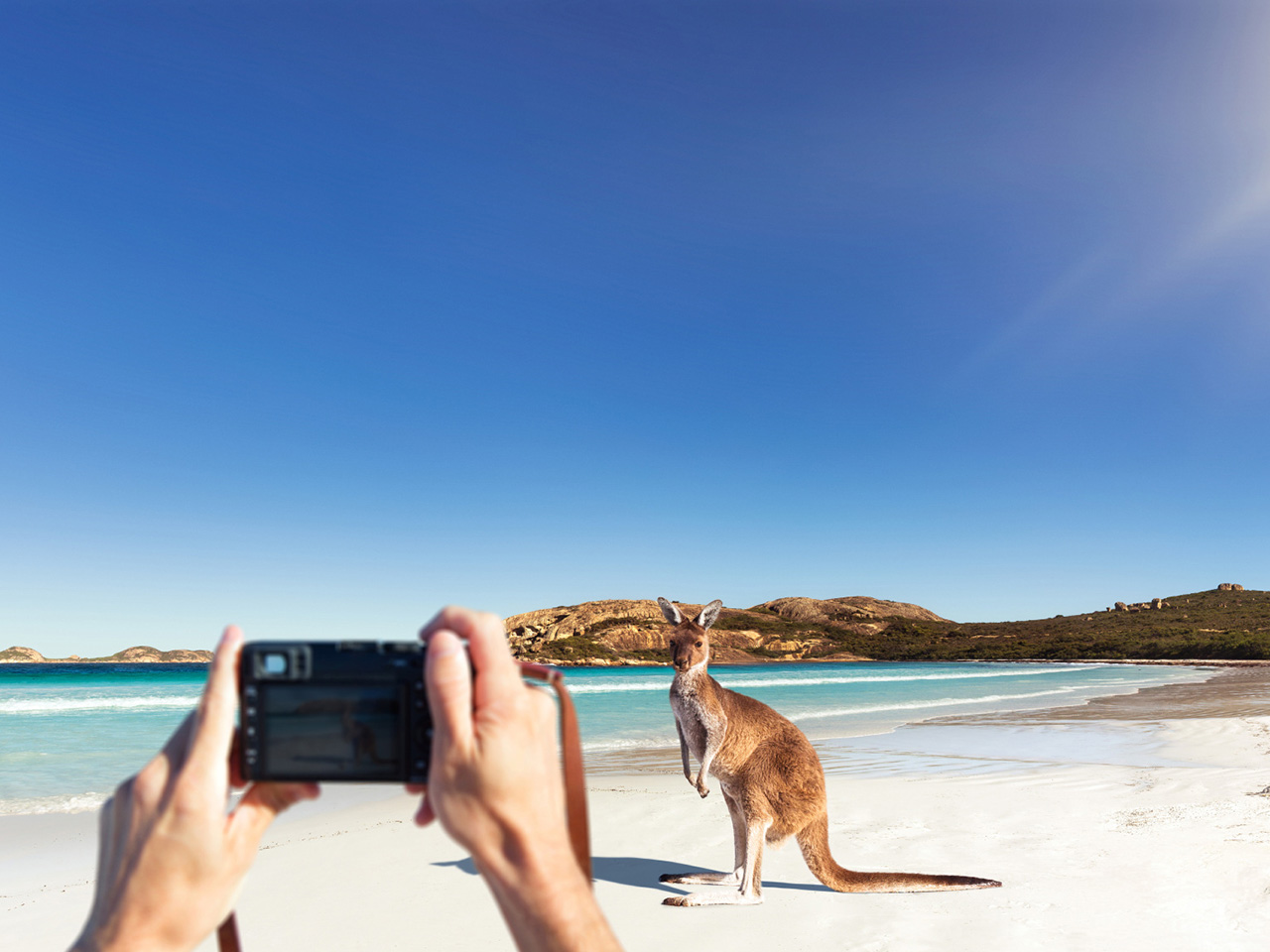 Listopedia: The Ultimate Western Australia guide