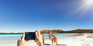 Listopedia: The Ultimate Western Australia guide