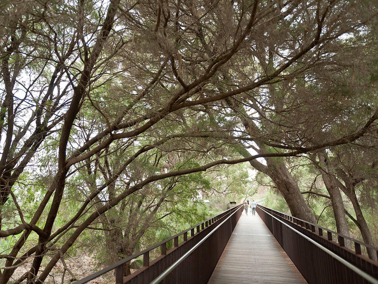 The Family Friendly Guide to Perth