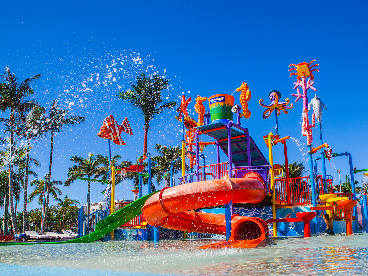 How to Choose a Family Resort in QLD