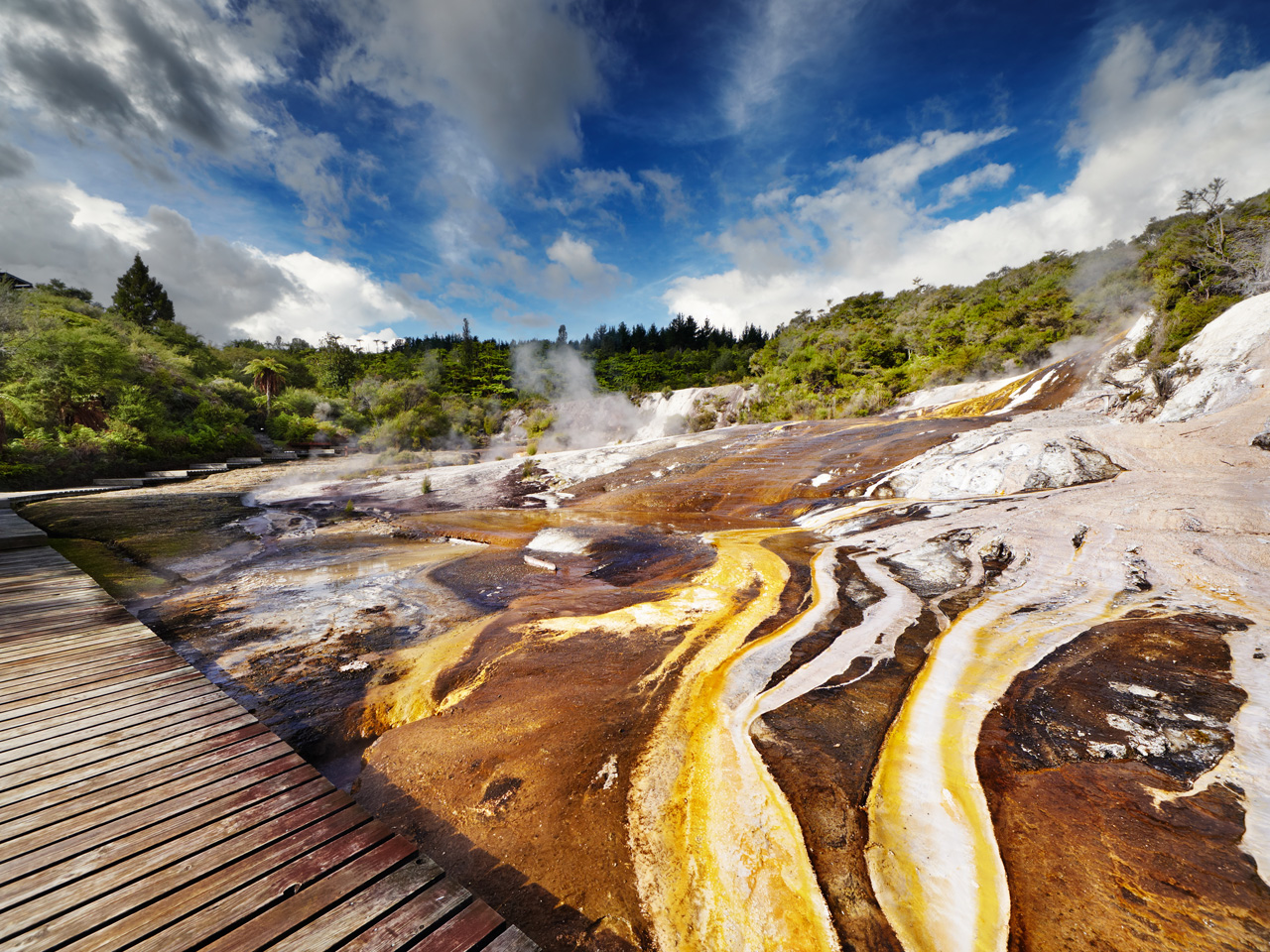 The Essential Guide to Rotorua