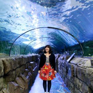 HelloSydney_8_Aquarium