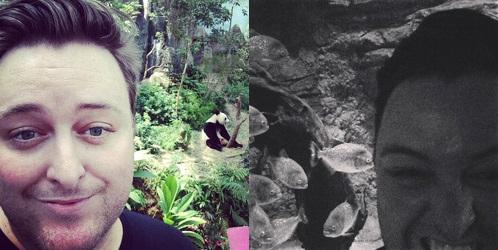 Strange and wonderful animal selfies